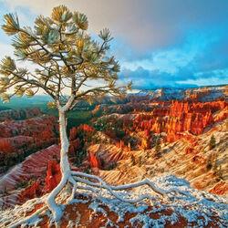Пазл онлайн: Национальный парк Брайс-Каньон
