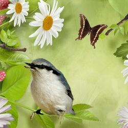 Пазл онлайн: Радости лета
