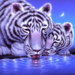Пазл онлайн: Ночной водопой
