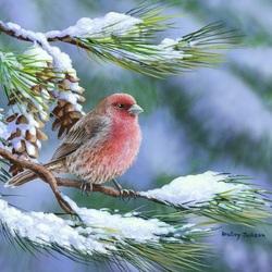 Пазл онлайн: На снежной ветке