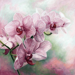 Пазл онлайн: Ветка орхидеи