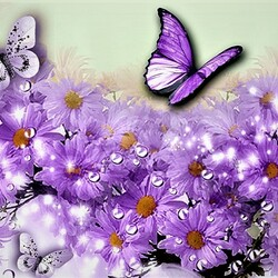 Пазл онлайн: Бабочки