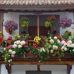 Пазл онлайн: Балкон в цветах