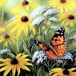 Пазл онлайн: Бабочка в цветах