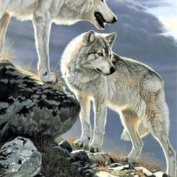 Пазл онлайн: Белые волки