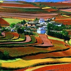 Пазл онлайн: Разноцветные поля Китая