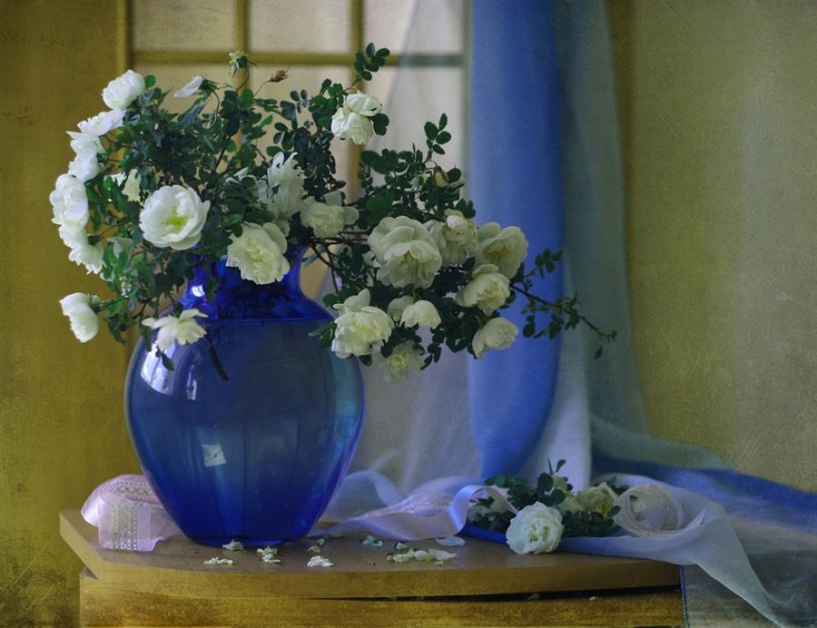 свежее фото с ваза