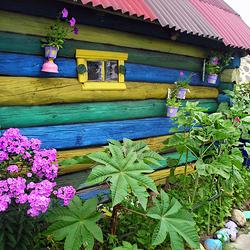 Пазл онлайн: Разноцветный домик