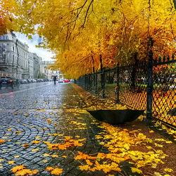 Пазл онлайн: Осень В Екатерининском саду