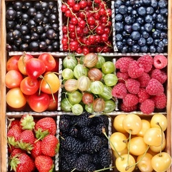 Пазл онлайн: Ячейки с ягодами