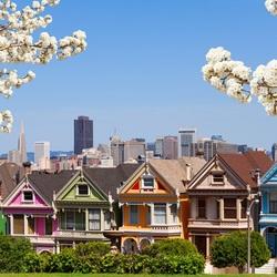 Пазл онлайн: Весна в Сан-Франциско