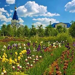 Пазл онлайн: Монастырский сад