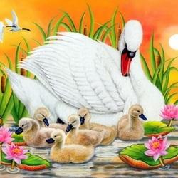 Пазл онлайн: Лебединая семья