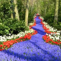 Пазл онлайн: Весенний парк Кёкенхофа