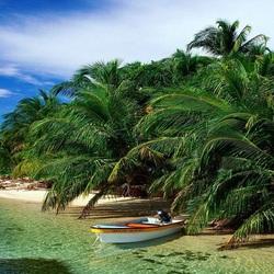 Пазл онлайн: Лодка в пальмах