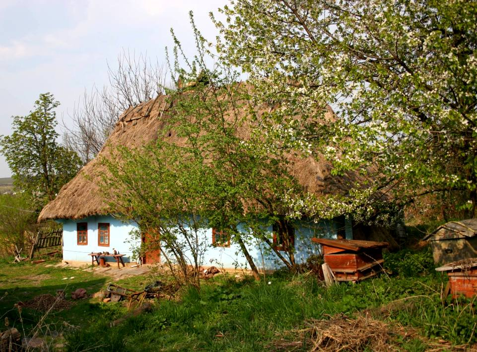 Картинка украинского села