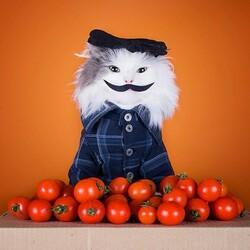 Пазл онлайн: Продавец помидоров