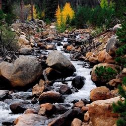 Пазл онлайн: Речка в лесу