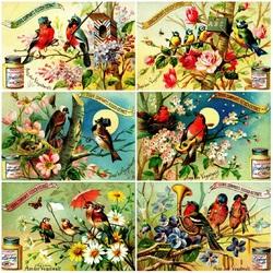 Пазл онлайн: Из жизни птиц