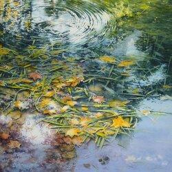 Пазл онлайн: Листья на воде