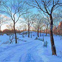 Пазл онлайн: Зима в Центральном парке
