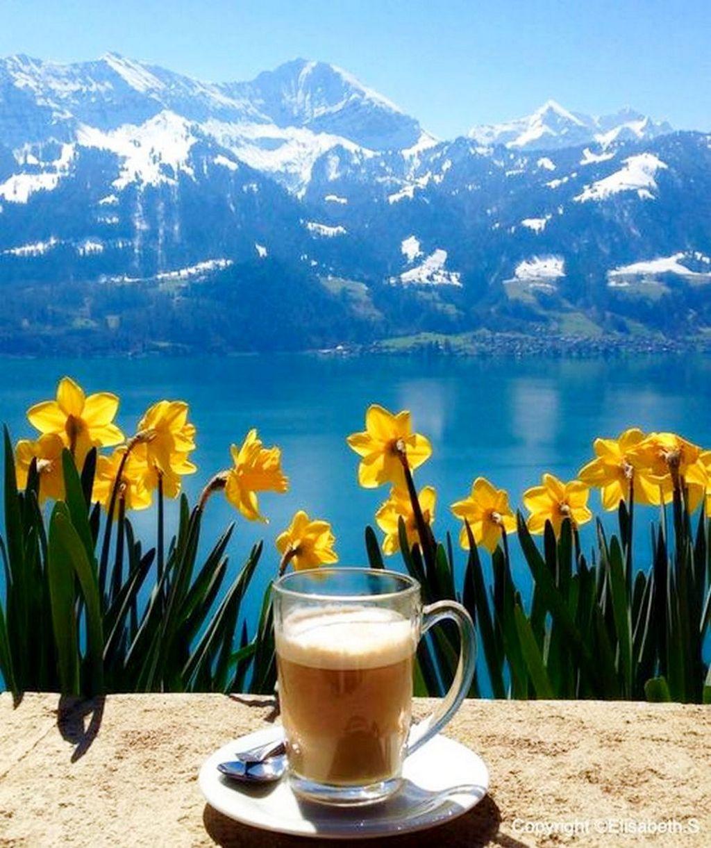 Доброе утро в горах открытка, отходняк