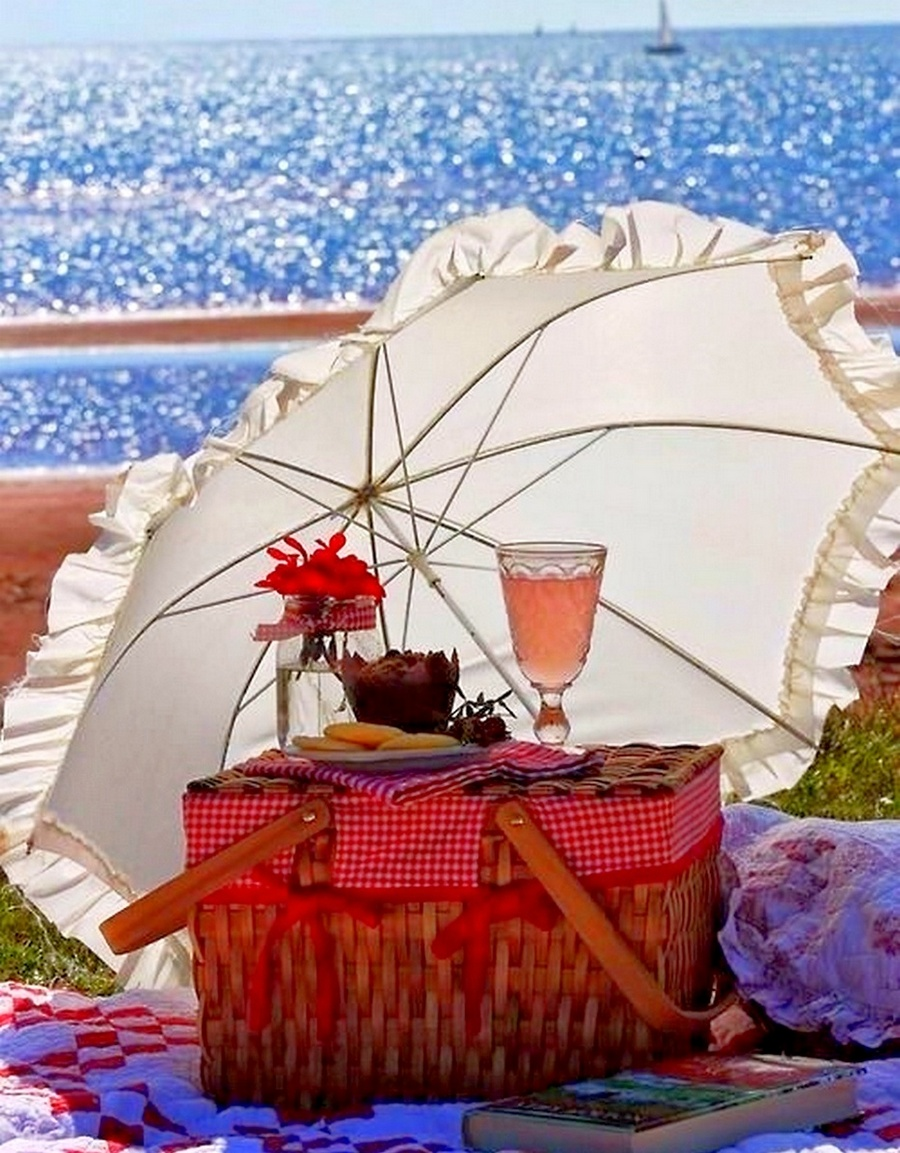 an overnight picnic by the sea essay A day at the beach essay - download as pdf file (pdf), text file (txt) or read online essay essay search search upload  translucent, sea-green ocean.