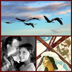 Пазл онлайн: 60 лет фильму «Летят журавли»
