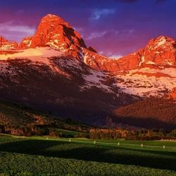Пазл онлайн: Поле около гор