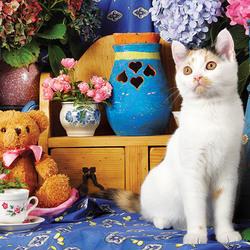 Пазл онлайн: Натюрморт с кошкой