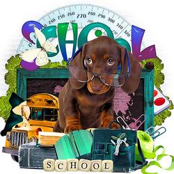 Пазл онлайн: Школа