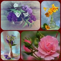 Пазл онлайн: Прелесть цветов