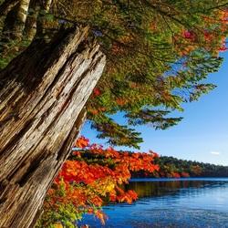 Пазл онлайн: Скоро осень