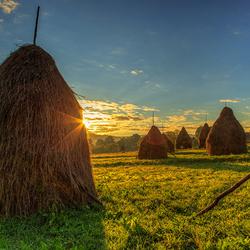 Пазл онлайн: Стога сена