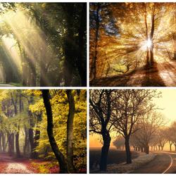 Пазл онлайн: И солнце и туманы