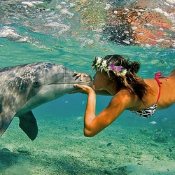 Пазл онлайн: Подводный поцелуй