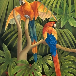 Пазл онлайн: Два попугая