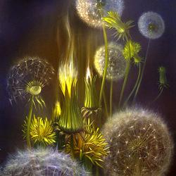 Пазл онлайн: Dandelion/Одуванчик