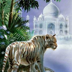 Пазл онлайн: Белый тигр
