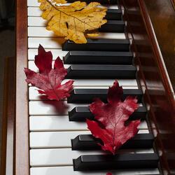 Пазл онлайн: Мелодии осени