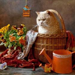 Пазл онлайн: Оранжевое лето
