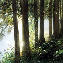 Пазл онлайн: Деревья