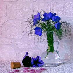 Пазл онлайн: Синие колокольчики