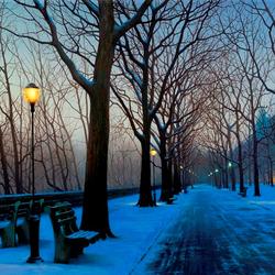 Пазл онлайн: Зимний бульвар