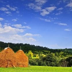 Пазл онлайн: Два стога сена