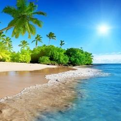 Пазл онлайн: Солнце, море, пальмы