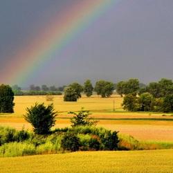 Пазл онлайн: Поле и радуга