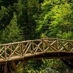 Пазл онлайн: Деревянный мостик