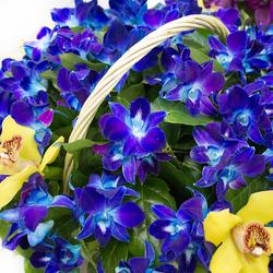 Пазл онлайн: Корзина орхидей