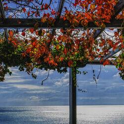 Пазл онлайн: Окно в море